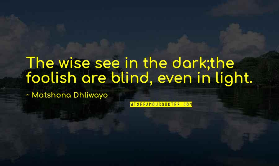 Fool Person Quotes By Matshona Dhliwayo: The wise see in the dark;the foolish are