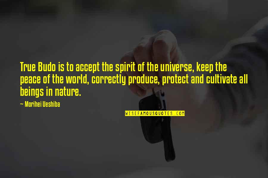 Fools And Fanatics Quotes By Morihei Ueshiba: True Budo is to accept the spirit of