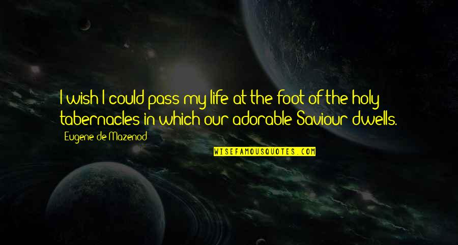 Foot Quotes By Eugene De Mazenod: I wish I could pass my life at