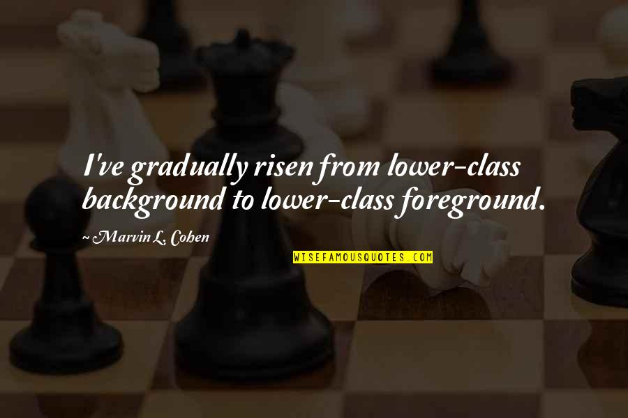 Foreground Quotes By Marvin L. Cohen: I've gradually risen from lower-class background to lower-class