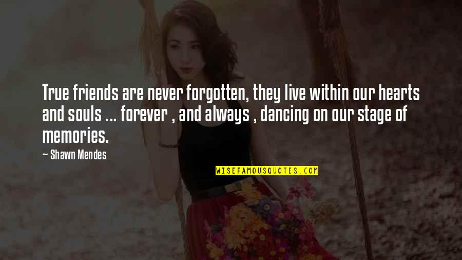 Forever Best Friends Quotes By Shawn Mendes: True friends are never forgotten, they live within