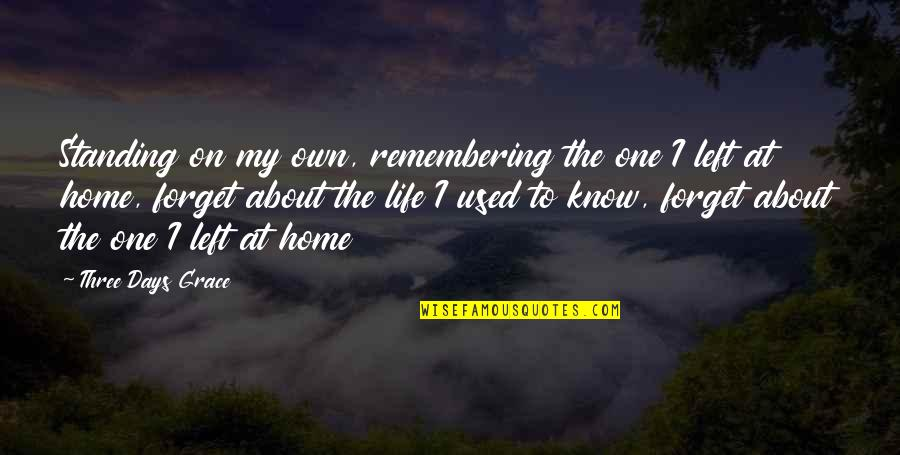 Forget Life Quotes By Three Days Grace: Standing on my own, remembering the one I