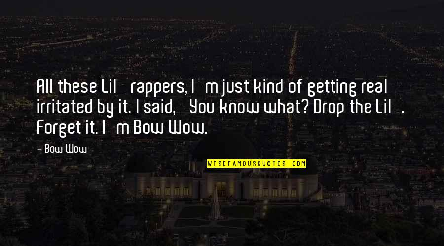 Forget You All Quotes By Bow Wow: All these Lil' rappers, I'm just kind of
