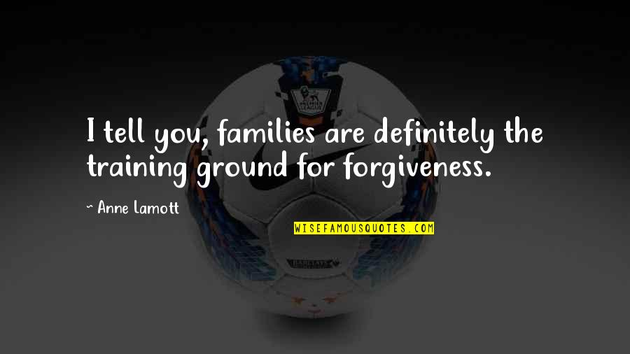 Forgiveness And Family Quotes By Anne Lamott: I tell you, families are definitely the training