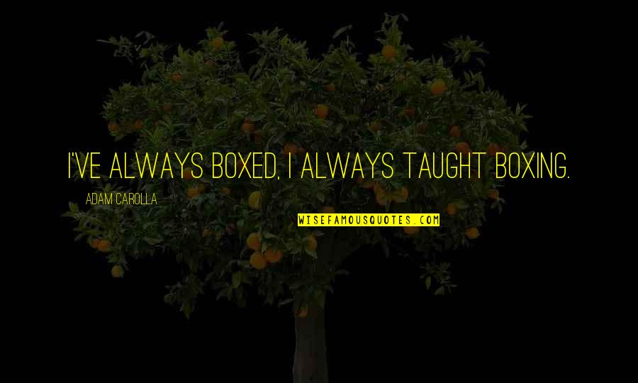 Forgiveness In Islam Quotes By Adam Carolla: I've always boxed, I always taught boxing.