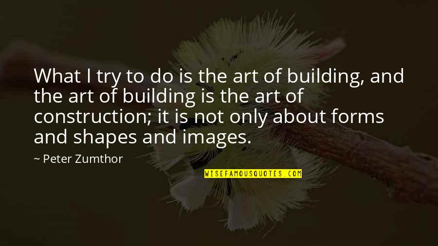 Forms Of Art Quotes By Peter Zumthor: What I try to do is the art