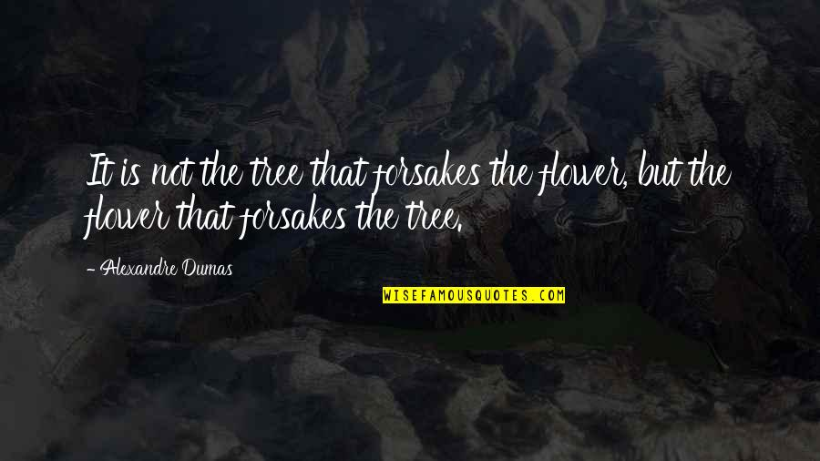 Forsakes Quotes By Alexandre Dumas: It is not the tree that forsakes the