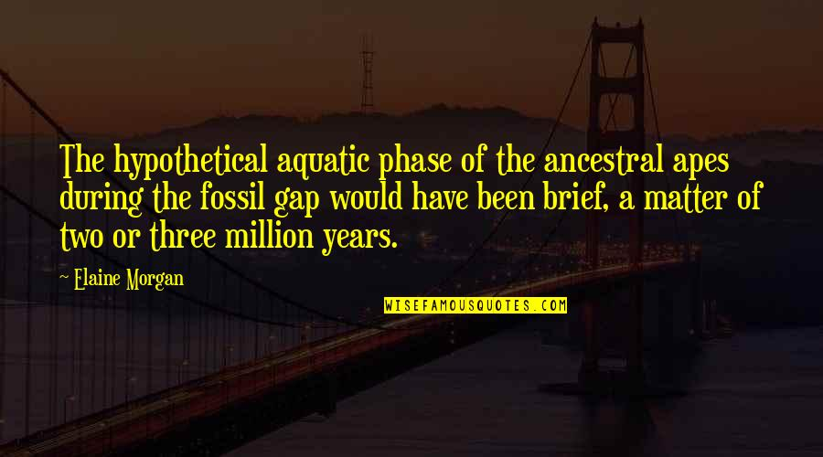 Fossil Quotes By Elaine Morgan: The hypothetical aquatic phase of the ancestral apes