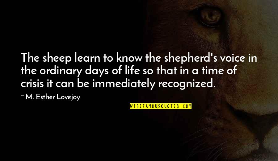 Four Letter Words Quotes By M. Esther Lovejoy: The sheep learn to know the shepherd's voice