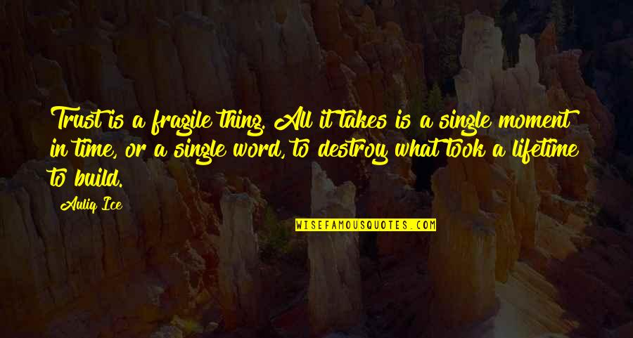 Fragile Relationships Quotes By Auliq Ice: Trust is a fragile thing. All it takes