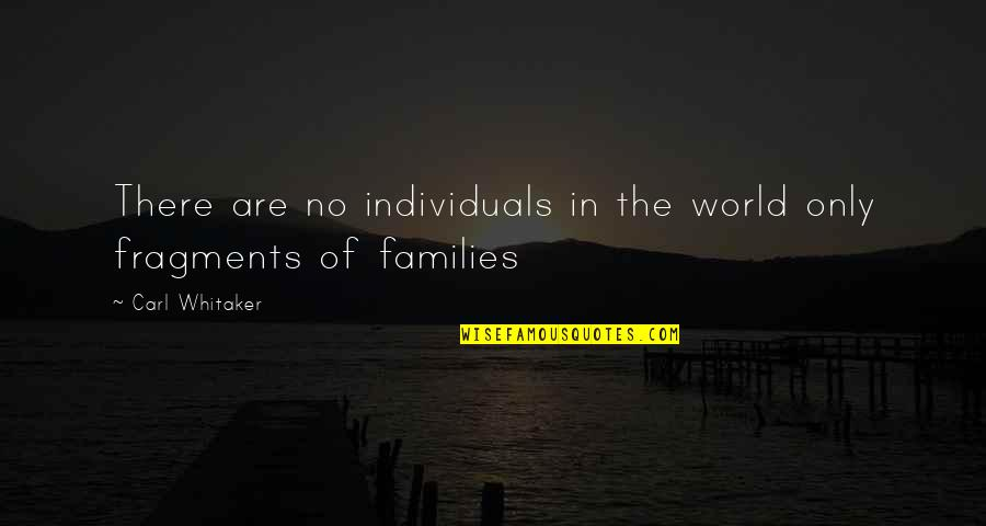 Fragments Quotes By Carl Whitaker: There are no individuals in the world only