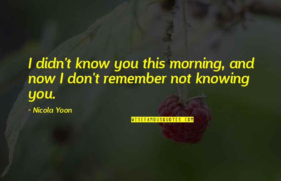 Fraiche Quotes By Nicola Yoon: I didn't know you this morning, and now