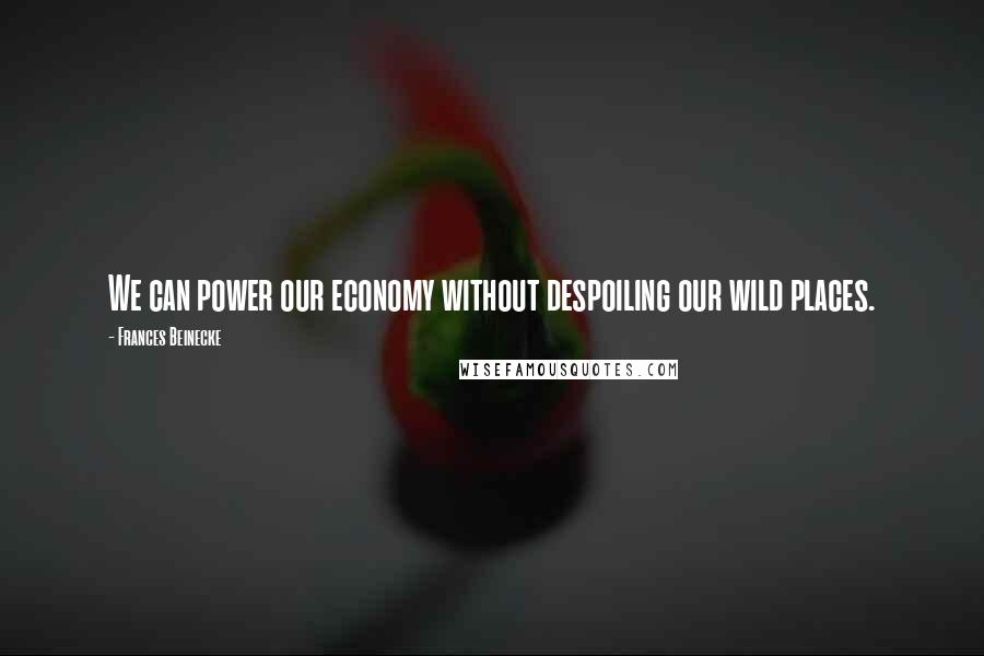 Frances Beinecke quotes: We can power our economy without despoiling our wild places.