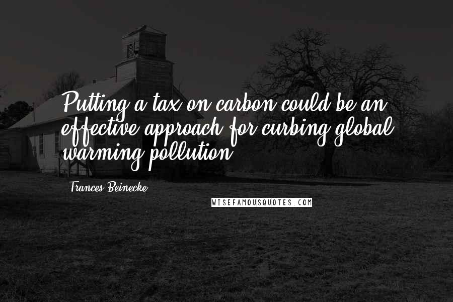 Frances Beinecke quotes: Putting a tax on carbon could be an effective approach for curbing global warming pollution.