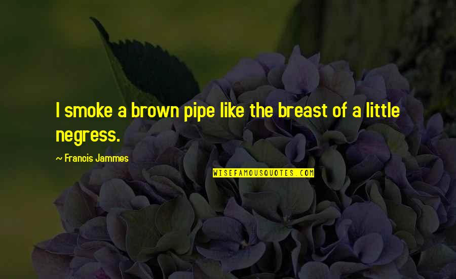 Francis Jammes Quotes By Francis Jammes: I smoke a brown pipe like the breast