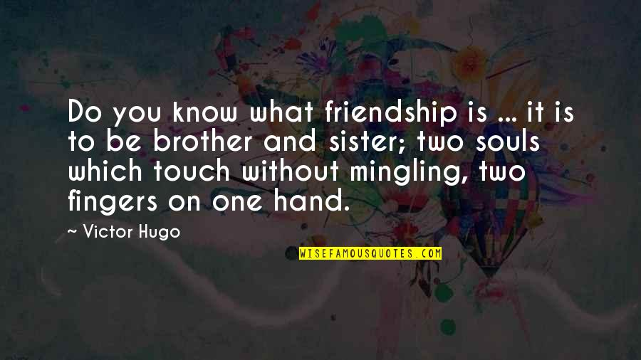 Francophones Quotes By Victor Hugo: Do you know what friendship is ... it
