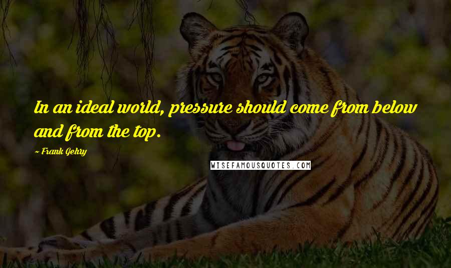 Frank Gehry quotes: In an ideal world, pressure should come from below and from the top.