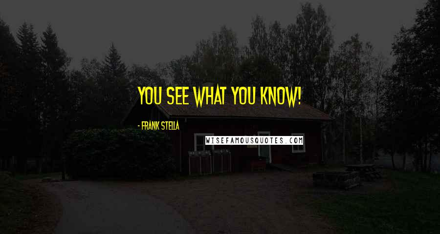 Frank Stella quotes: You see what you know!
