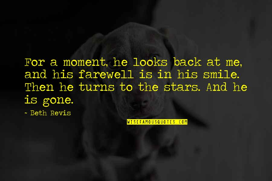 Frankenstein Hubris Quotes By Beth Revis: For a moment, he looks back at me,