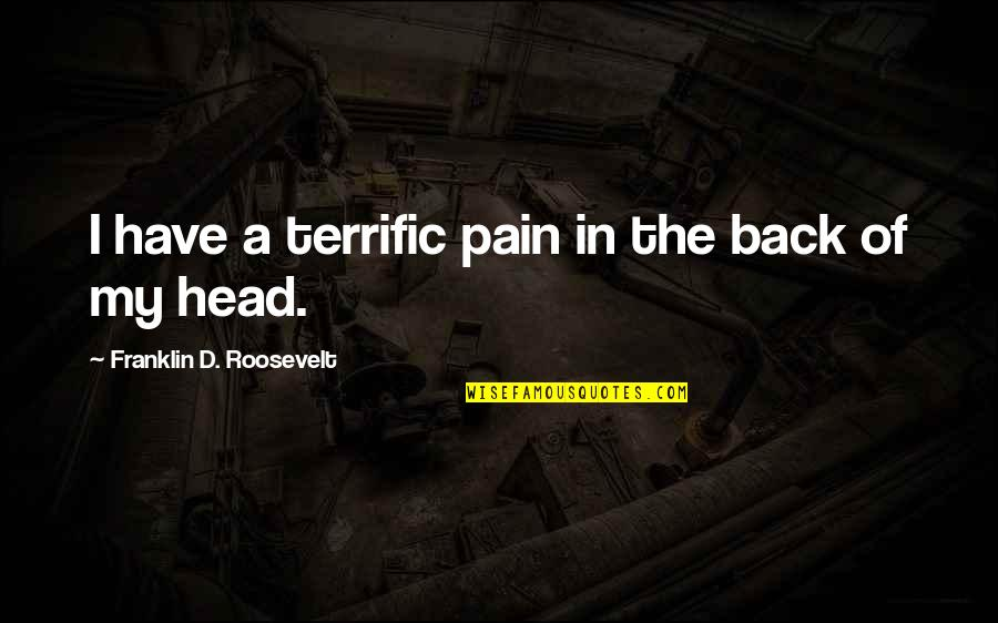 Franklin Roosevelt Quotes By Franklin D. Roosevelt: I have a terrific pain in the back
