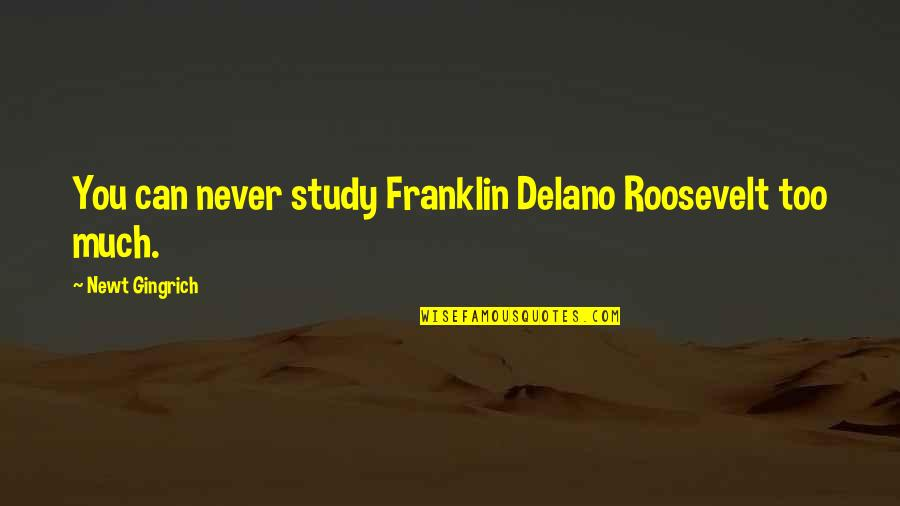 Franklin Roosevelt Quotes By Newt Gingrich: You can never study Franklin Delano Roosevelt too