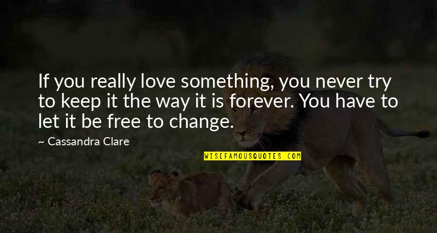 Fray Quotes By Cassandra Clare: If you really love something, you never try