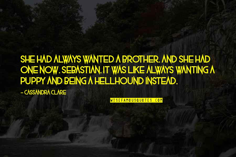 Fray Quotes By Cassandra Clare: She had always wanted a brother. And she