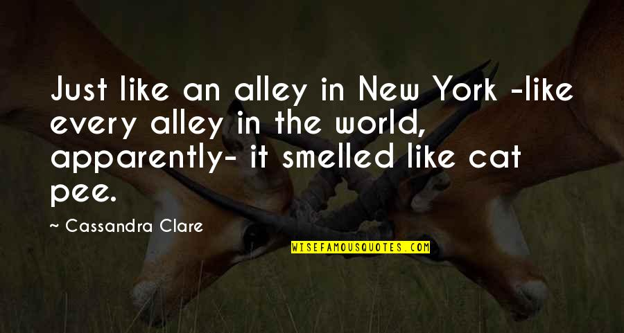 Fray Quotes By Cassandra Clare: Just like an alley in New York -like