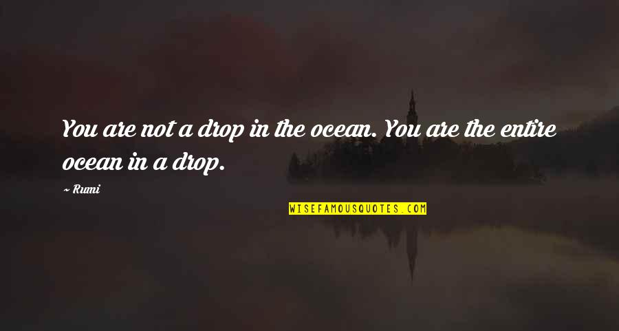 Freddy Soto Quotes By Rumi: You are not a drop in the ocean.