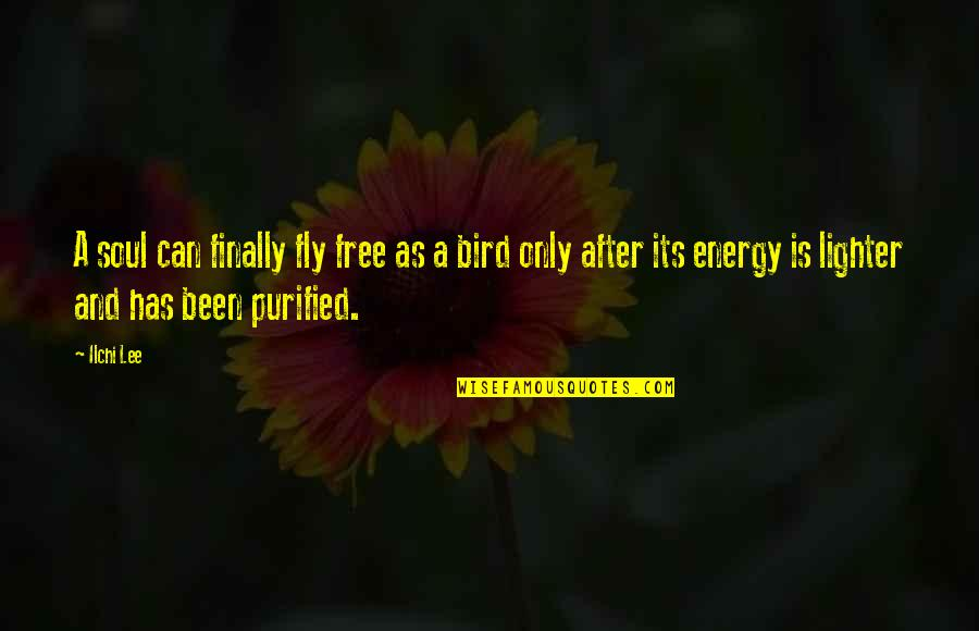 Free Fly Quotes By Ilchi Lee: A soul can finally fly free as a