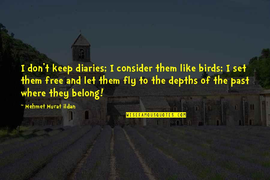Free Fly Quotes By Mehmet Murat Ildan: I don't keep diaries; I consider them like