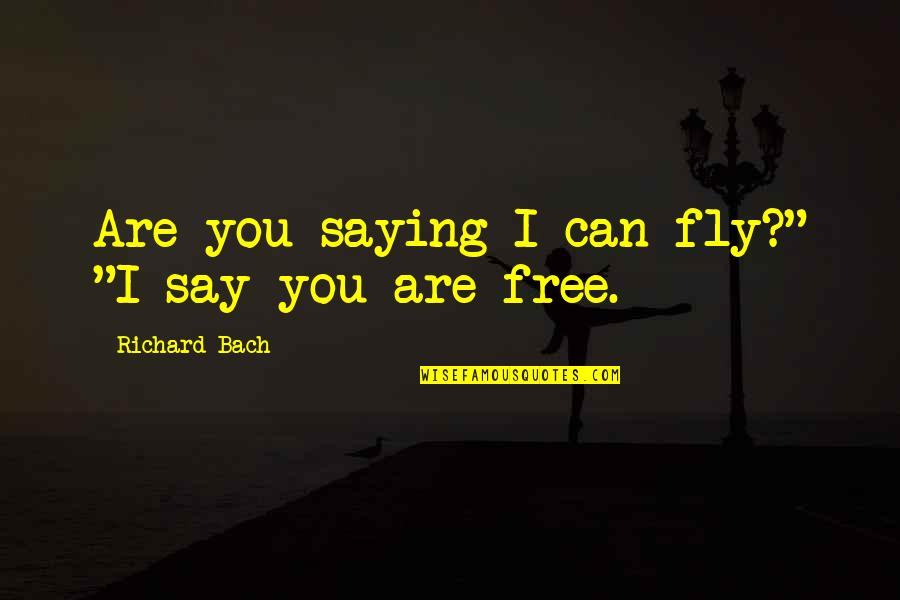 """Free Fly Quotes By Richard Bach: Are you saying I can fly?"""" """"I say"""