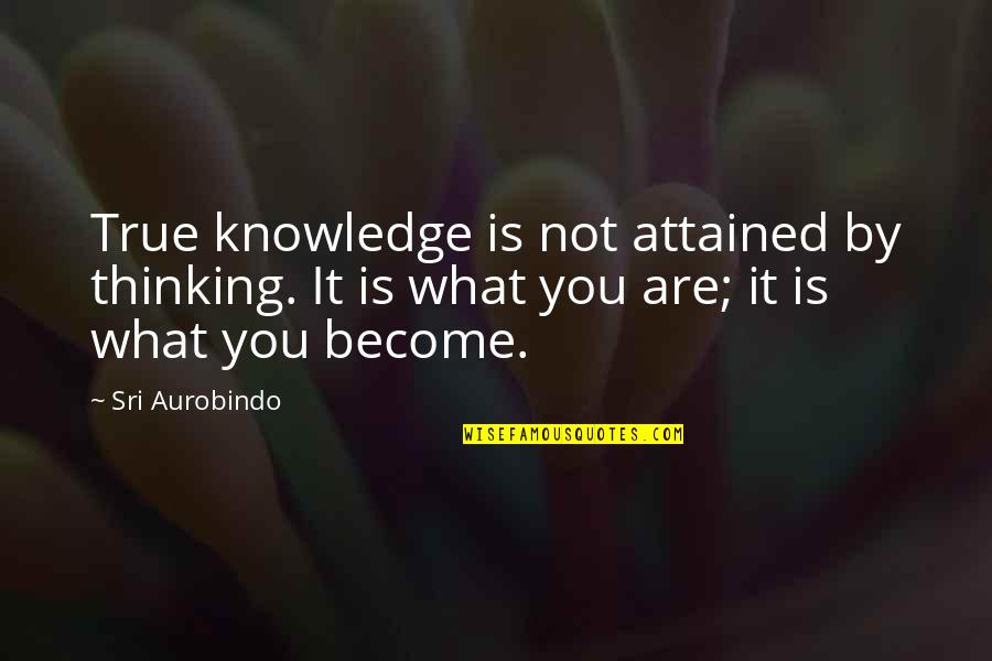 Free Friendship Sayings And Quotes By Sri Aurobindo: True knowledge is not attained by thinking. It