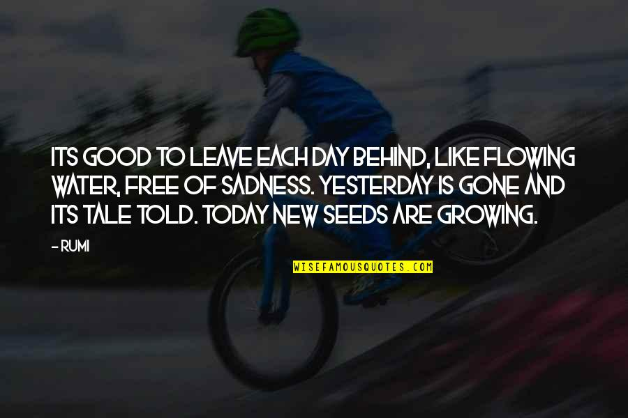 Free Like Water Quotes By Rumi: Its good to leave each day behind, like