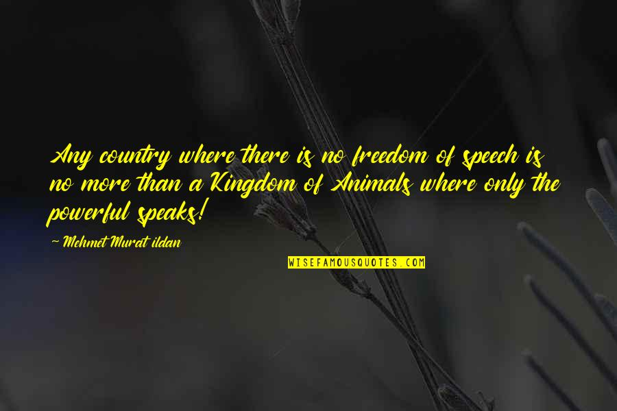 Freedom For Animals Quotes By Mehmet Murat Ildan: Any country where there is no freedom of