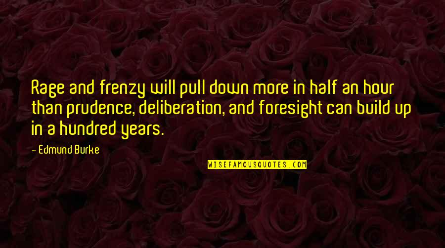 Frenzy Quotes By Edmund Burke: Rage and frenzy will pull down more in