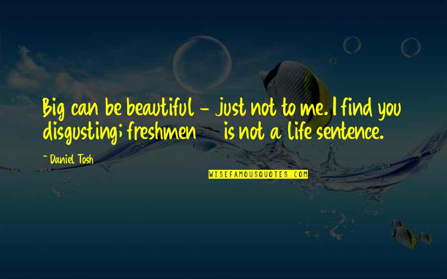 Freshman's Quotes By Daniel Tosh: Big can be beautiful - just not to