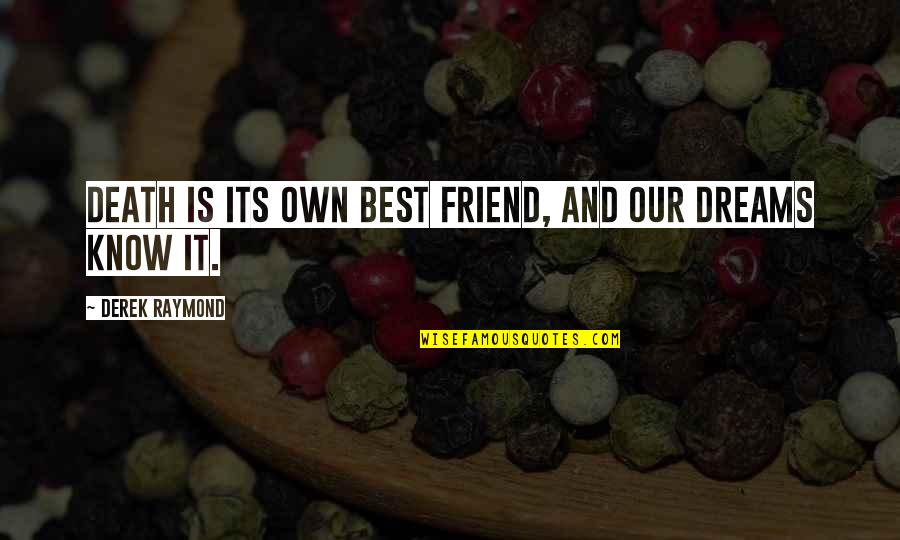 Friend And Death Quotes By Derek Raymond: Death is its own best friend, and our