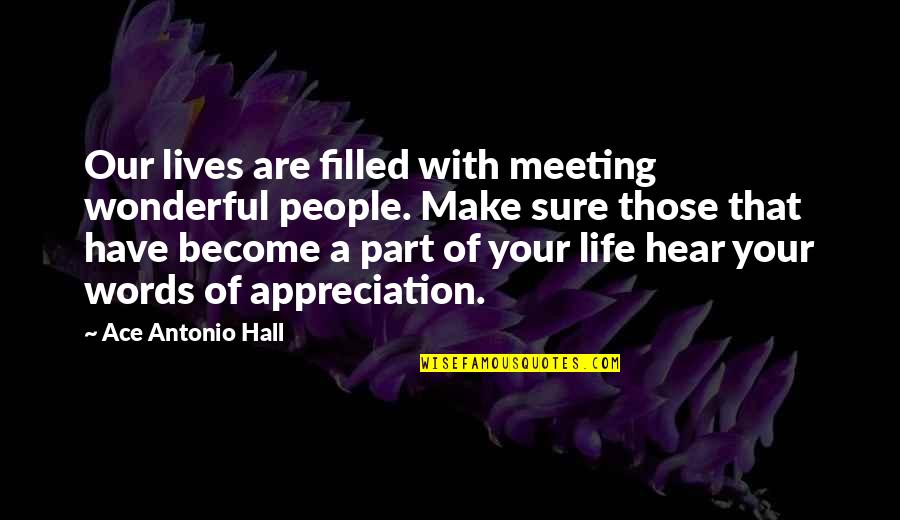 Friends And Thanksgiving Quotes By Ace Antonio Hall: Our lives are filled with meeting wonderful people.