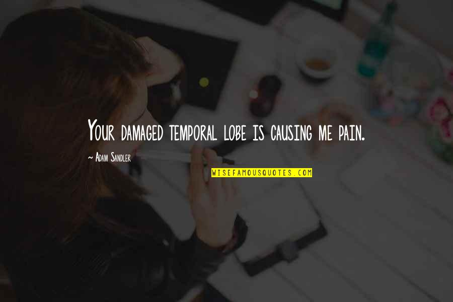 Friends Messing Up Relationships Quotes By Adam Sandler: Your damaged temporal lobe is causing me pain.