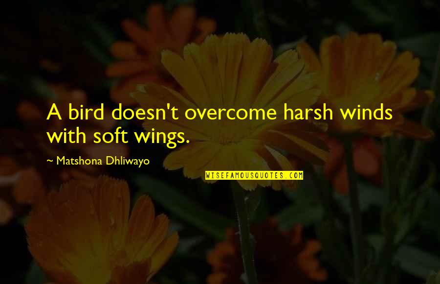 Friends Reflection You Quotes By Matshona Dhliwayo: A bird doesn't overcome harsh winds with soft