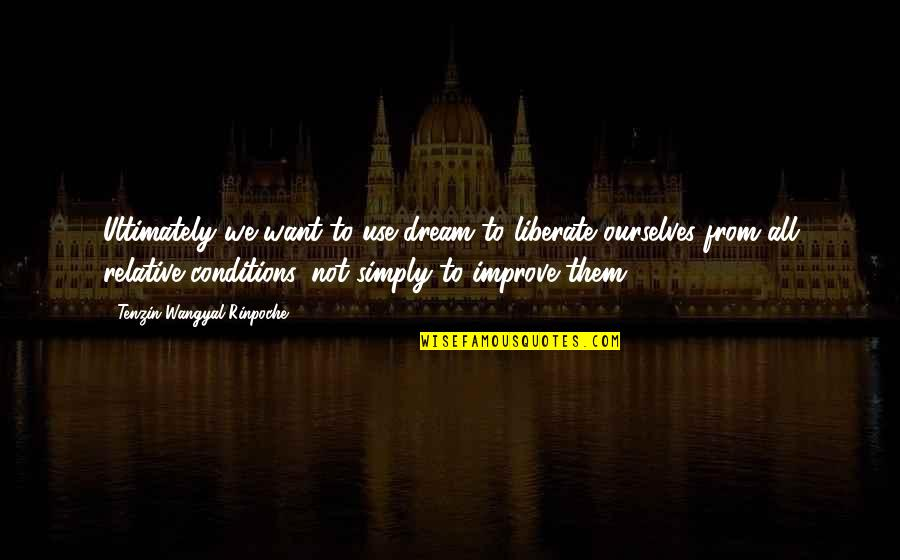 Friends Reflection You Quotes By Tenzin Wangyal Rinpoche: Ultimately we want to use dream to liberate
