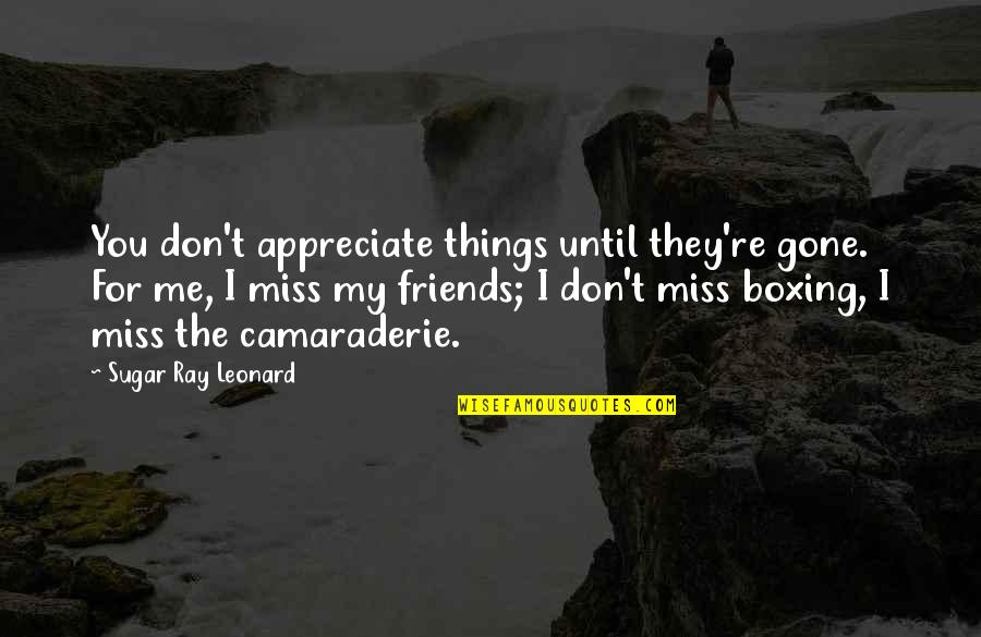 Friends That You Miss Quotes By Sugar Ray Leonard: You don't appreciate things until they're gone. For