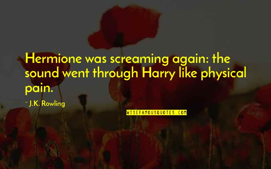 Friendship Harry Potter Quotes By J.K. Rowling: Hermione was screaming again: the sound went through