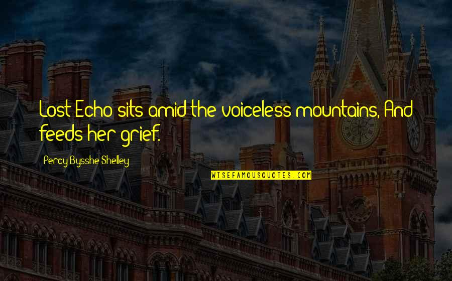 Frieza Special Quotes By Percy Bysshe Shelley: Lost Echo sits amid the voiceless mountains, And
