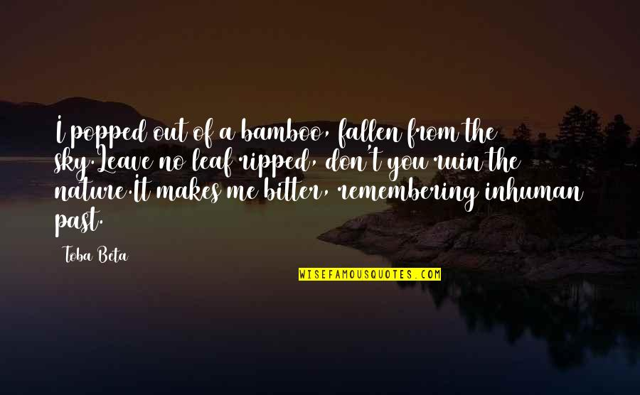 From Nature Quotes By Toba Beta: I popped out of a bamboo, fallen from