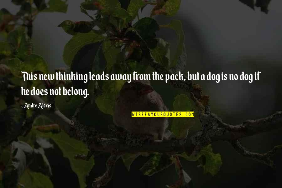 From The Dog Quotes By Andre Alexis: This new thinking leads away from the pack,