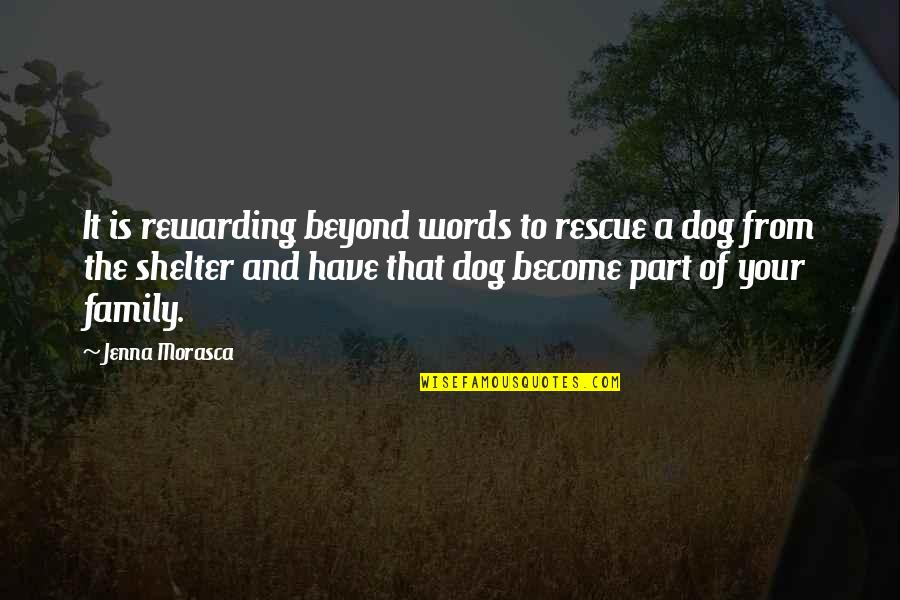 From The Dog Quotes By Jenna Morasca: It is rewarding beyond words to rescue a