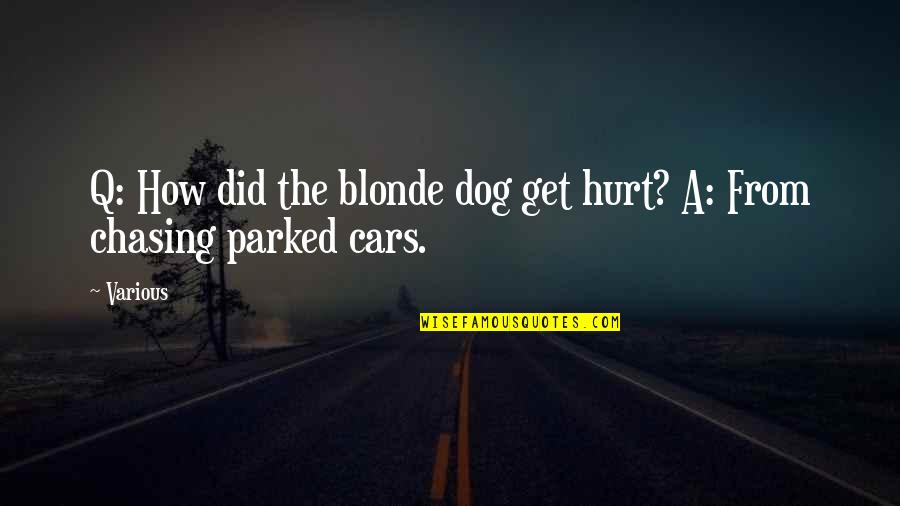 From The Dog Quotes By Various: Q: How did the blonde dog get hurt?