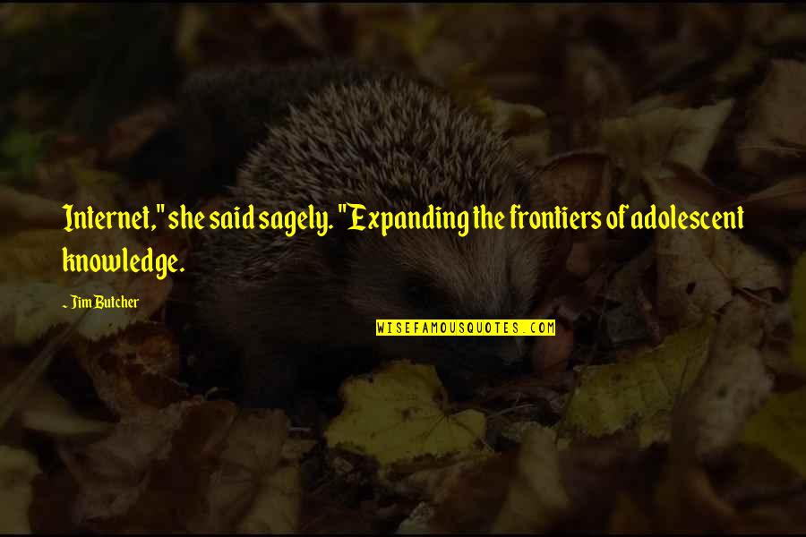"Frontiers Quotes By Jim Butcher: Internet,"" she said sagely. ""Expanding the frontiers of"